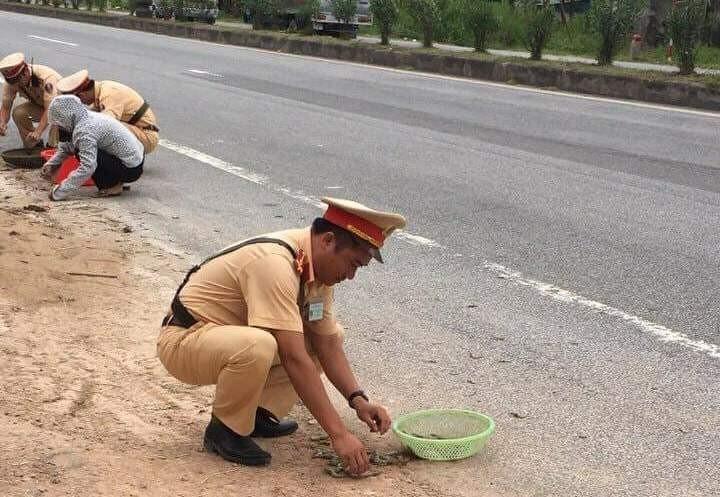 CSGT giúp dân nhặt tôm, quét đá dăm trên đường  - ảnh 3