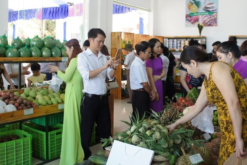Khai trương cửa hàng sản phẩm rau sạch không hóa chất - ảnh 2