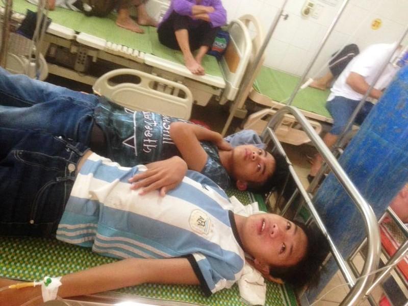 Ong rừng tấn công 15 học sinh và người dân nhập viện - ảnh 1