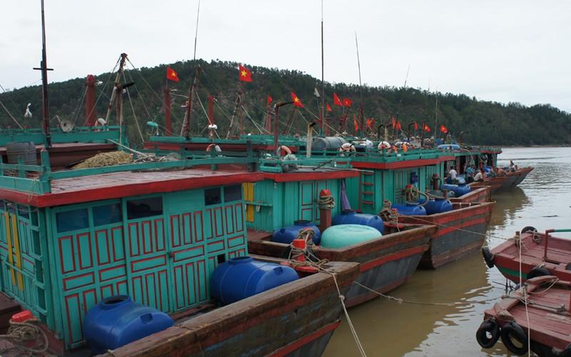 Huy động tàu thuyền dân sự bảo vệ biển đảo Tổ quốc - ảnh 1