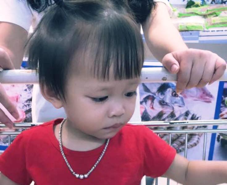 Hàng trăm người tìm kiếm bé gái 2 tuổi mất tích bí ẩn - ảnh 1