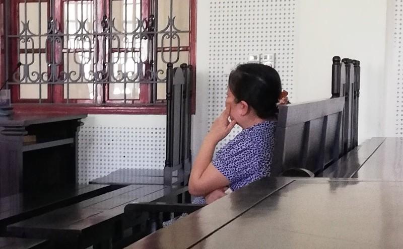 Nữ bị cáo xin hoãn phiên xử vụ lừa đảo cách đây hơn 15 năm - ảnh 2
