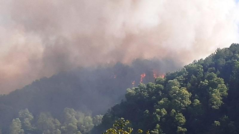 Đang cháy lớn ở rừng Hà Tĩnh, di dời khẩn cấp 100 hộ dân  - ảnh 1