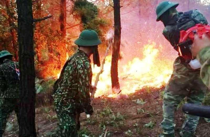 Bắt giữ người nghi gây ra vụ cháy lớn rừng núi Hồng Lĩnh - ảnh 2