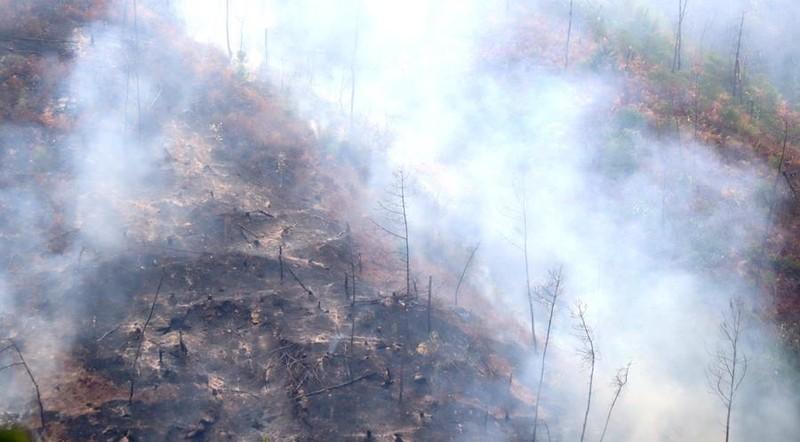 Chùm ảnh: Cận cảnh nơi cháy rừng lớn, người tử vong  - ảnh 5