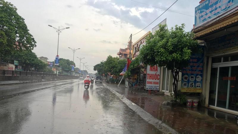 Bắc Nghệ An có 'mưa vàng', rừng Hà Tĩnh vẫn chờ... - ảnh 1