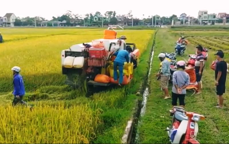 Bão số 4 đang vào, Nghệ An, Hà Tĩnh đã có mưa lớn - ảnh 2