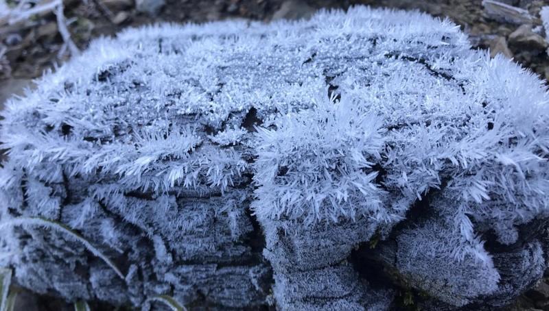 Tuyết, băng giá phủ trắng núi đồi miền núi Nghệ An  - ảnh 1
