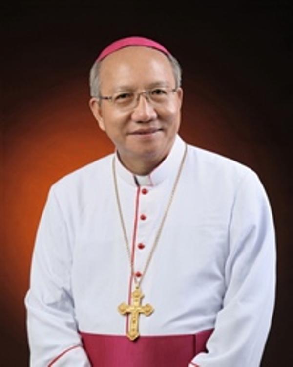 Giám mục Giáo phận tỉnh Hà Tĩnh nói về đông người đến nhà thờ  - ảnh 1