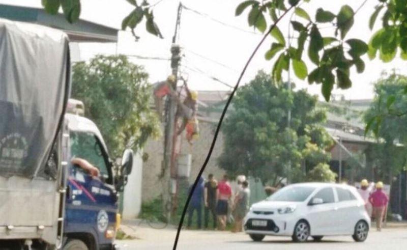 Công nhân bị điện giật tử vong khi đường dây đã cắt điện? - ảnh 1