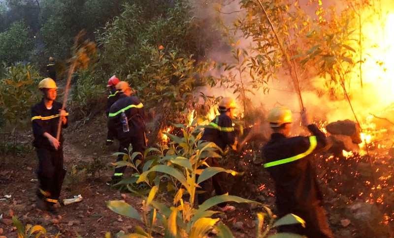 Cháy rừng bùng phát trở lại ở Nghệ An - ảnh 1