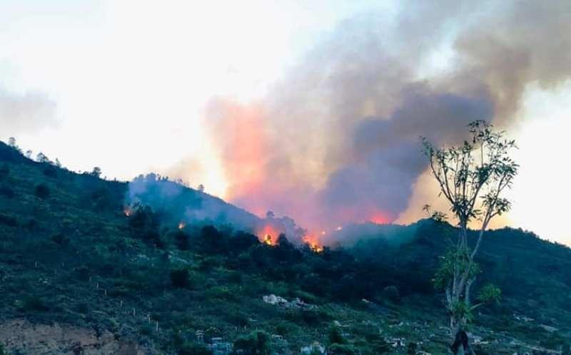 Thắp hương gây ra vụ cháy rừng dữ dội  - ảnh 1