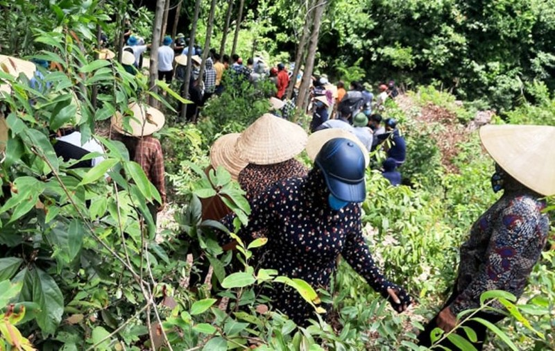 3 học sinh ở Hà Tĩnh đi hái sim bị đuối nước tử vong - ảnh 1