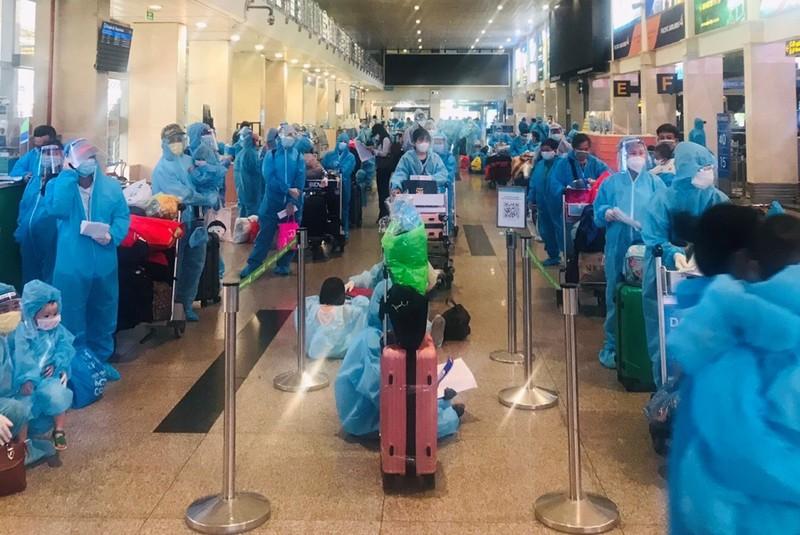 Đề xuất tổ chức chuyến bay đón bà bầu ở TP.HCM về quê Hà Tĩnh - ảnh 2