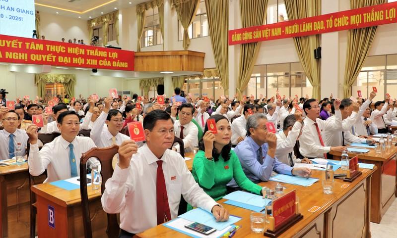 Bà Võ Thị Ánh Xuân tái đắc cử Bí thư Tỉnh ủy An Giang - ảnh 1