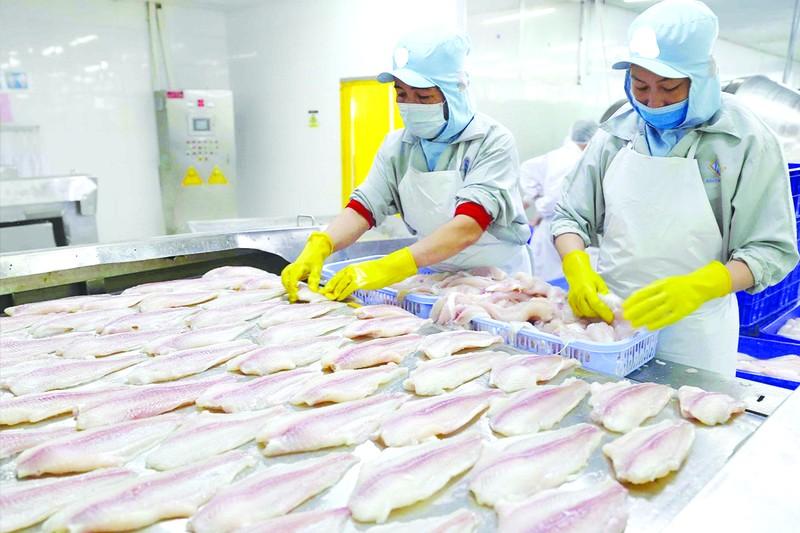 Nông, thủy sản Việt kẹt đường sang Trung Quốc - ảnh 1