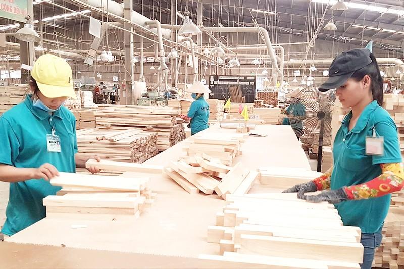 Gỗ Việt xuất khẩu phải giải trình với Mỹ - ảnh 1
