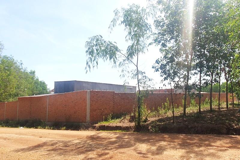 Đắk Nông: 1 thôn có gần 50 trại heo, quá ô nhiễm! - ảnh 2