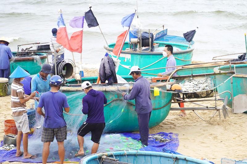 Bà Rịa-Vũng Tàu kiến nghị sửa đổi việc hỗ trợ lao động - ảnh 1