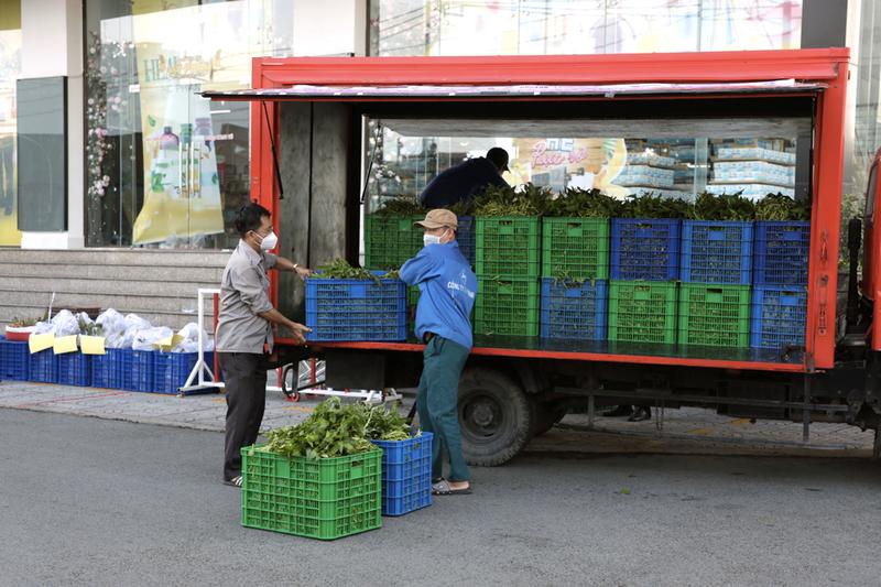 Gói rau củ 6,5 ký chỉ 50.000 đồng xuất hiện ở TP.HCM - ảnh 4
