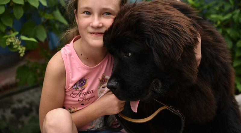 Một cô bé được Tổng thống Putin tặng chó cưng - ảnh 1