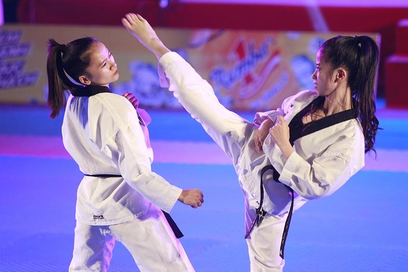 Tưng bừng lễ kỷ niệm 20 năm Taekwondo Việt Nam - ảnh 5