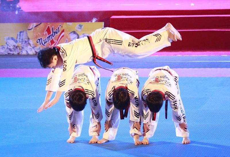 Tưng bừng lễ kỷ niệm 20 năm Taekwondo Việt Nam - ảnh 3
