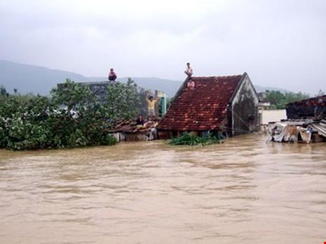 MTTQ Việt Nam hỗ trợ khẩn cấp 5,5 tỉ đồng - ảnh 1