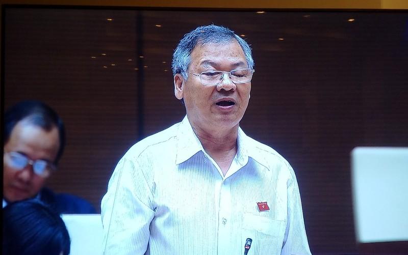 Đại biểu Đồng Nai tranh luận vụ phân bón Thuận Phong - ảnh 2