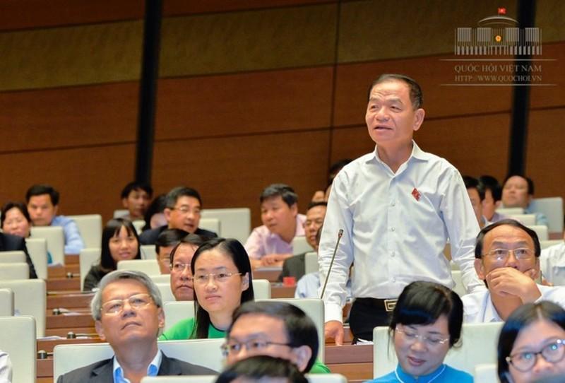 Đại biểu Lê Thanh Vân chất vấn vụ Mobifone mua AVG - ảnh 1