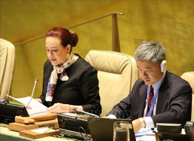 Liên Hiệp Quốc mặc niệm Chủ tịch nước Trần Đại Quang - ảnh 1