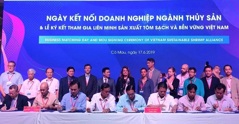 Con tôm sạch Việt Nam sẽ có 'visa' đi khắp thế giới? - ảnh 1