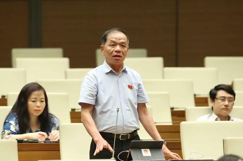'Không ít đại biểu suốt nhiệm kỳ ngán ngại phát biểu' - ảnh 2