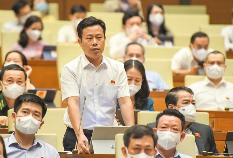 Giám đốc ĐHQG Hà Nội: 'Dùng học phí để tránh lao vào đại học rồi 'học đại'' - ảnh 1