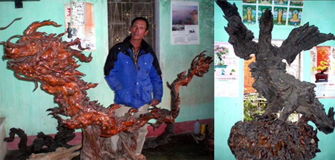 Kỳ lạ: nhặt được gốc cây