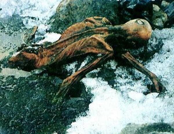 Trái đất nóng lên làm nhiều virus giết người sống lại - ảnh 2