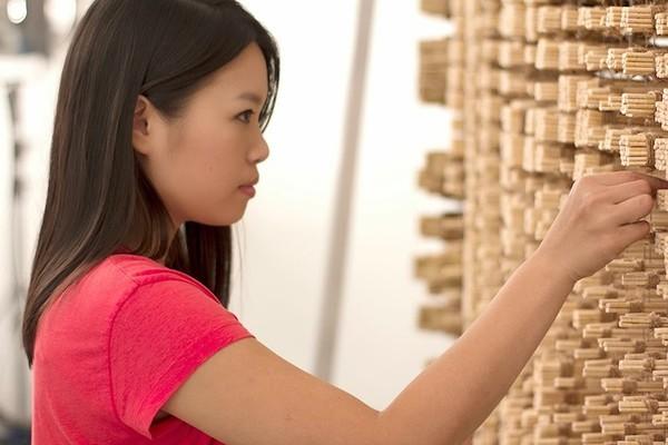 Ngỡ ngàng với chân dung Thành Long được làm từ 64.000 chiếc đũa - ảnh 9