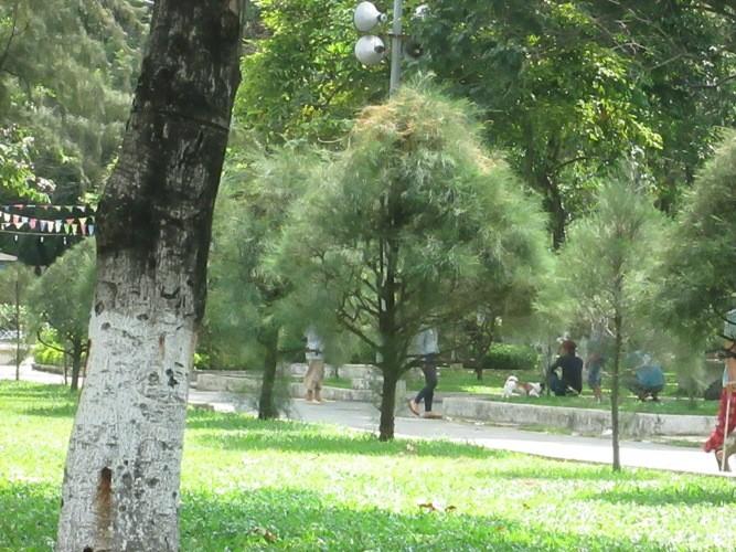 Những nhếch nhác ở một công viên - ảnh 5