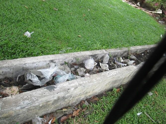 Những nhếch nhác ở một công viên - ảnh 3