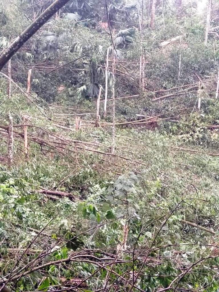 Thái Nguyên tan hoang vì giông lốc, mưa đá - ảnh 2