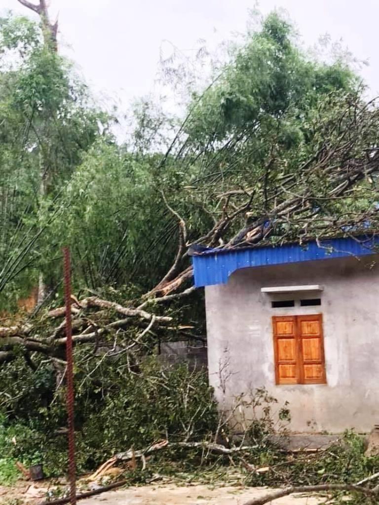 Thái Nguyên tan hoang vì giông lốc, mưa đá - ảnh 5