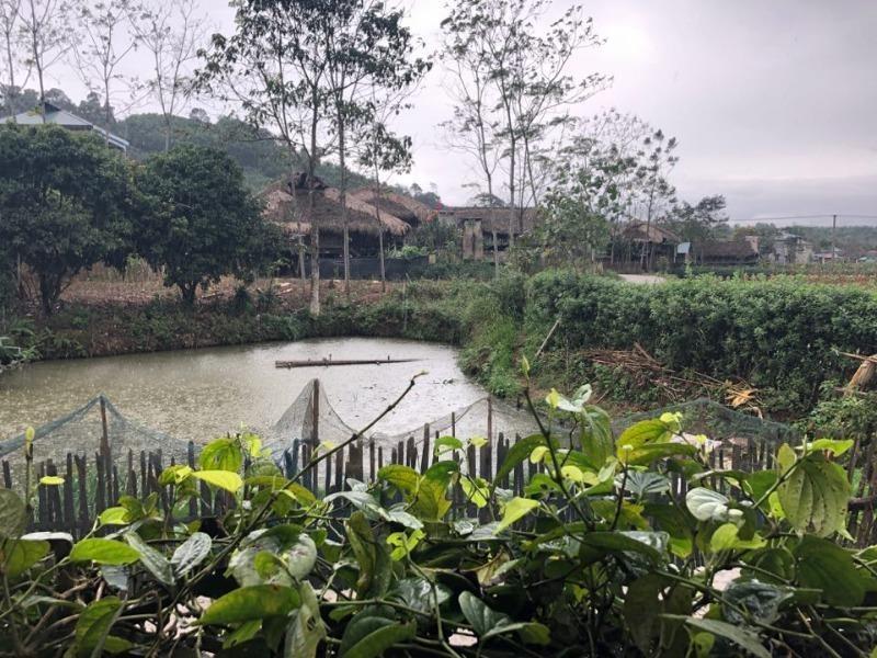 Thái Nguyên: Mùng 1 tết có mưa rào - ảnh 1