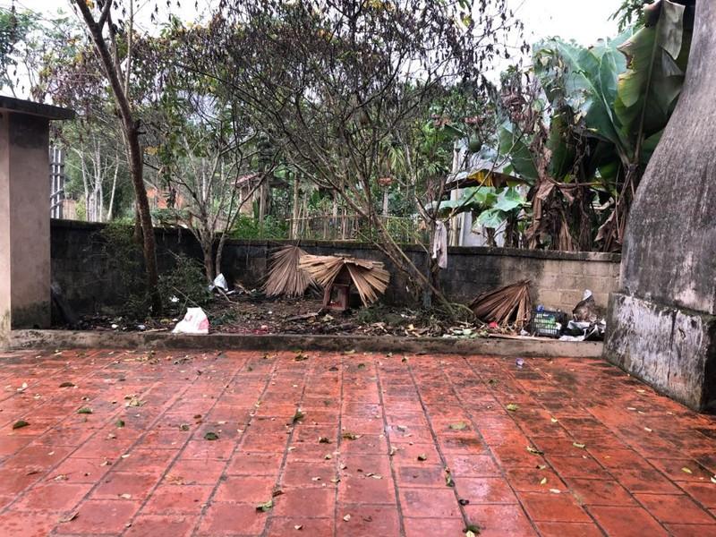Thái Nguyên: Mùng 1 tết có mưa rào - ảnh 4
