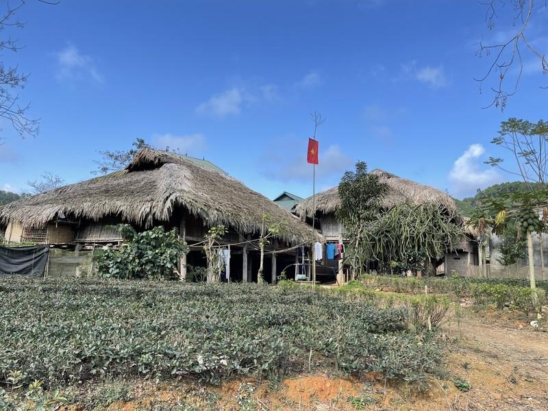 Mê mẩn sắc xuân ở Thái Nguyên - ảnh 5