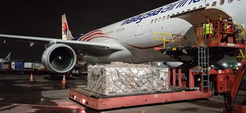 Lô thuốc Remdesivir đầu tiên do Vingroup nhập khẩu đã về tới Việt Nam - ảnh 1