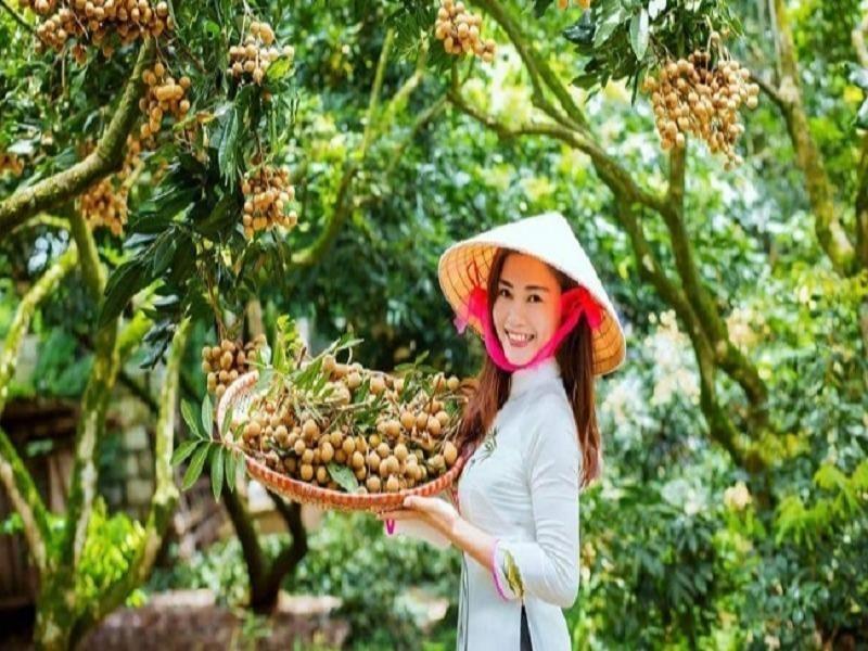Nhãn xuất khẩu của Việt Nam phụ thuộc gần 100 % vào TQ - ảnh 2