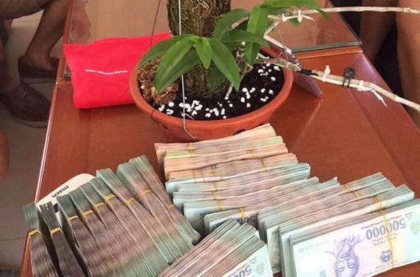 Giò phong lan lạ siêu đắt giá 1,1 tỉ đồng gây xôn xao - ảnh 1