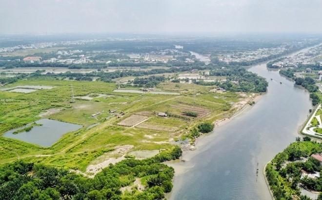 Gia đình Nguyễn Quốc Cường 'mất' hơn 135 tỷ đồng sau một đêm - ảnh 1