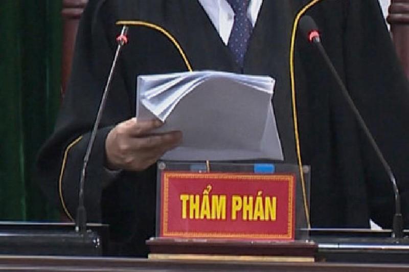 Chánh án TAND Tiền Giang kêu thiếu 20 thẩm phán - ảnh 1