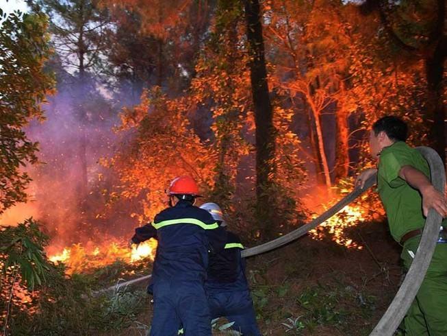 Người đàn ông đốt cành cây làm cháy gần 168 ha rừng - ảnh 1